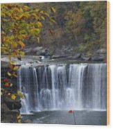 Cumberland Falls In Gold Wood Print
