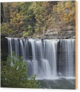 Cumberland Falls In Green Wood Print