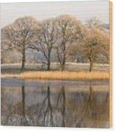 Cumbria, England Lake Scenic With Wood Print