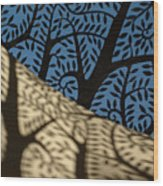 Cupola Wood Print
