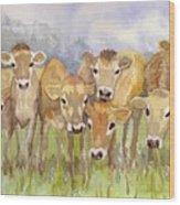 Curious Calves Wood Print