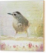 Curious Catbird Wood Print
