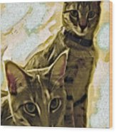 Curious Cats Wood Print by David G Paul
