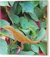 Curious Lizard Wood Print