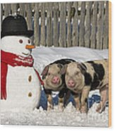 Curious Piglets And Snowman Wood Print