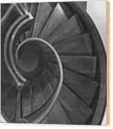 Curl Wood Print