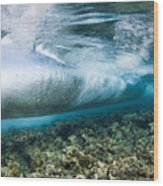 Curl Of Wave From Underwater Wood Print by Dave Fleetham - Printscapes
