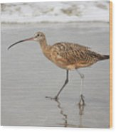 Curlew In The Surf Wood Print