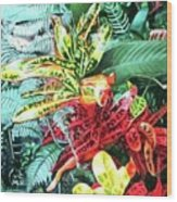 Curley Crotons Wood Print