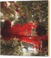 Curly Cardinal Wood Print