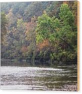 Current River 1 Wood Print by Marty Koch