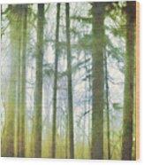 Curtain Of Morning Light Wood Print