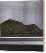 Curtains Wood Print