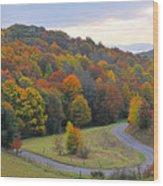 Curve Of Color Wood Print