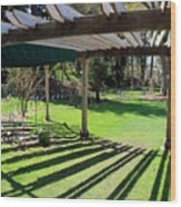 Curved Arbor  Wood Print