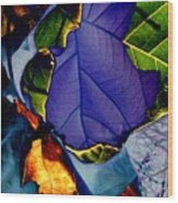 Curved Leaf Wood Print