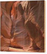 Curves Under The Desert Floor Wood Print