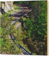 Curvy Road Wood Print