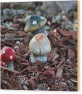 Cluster Of Toadstools  In Fairy Garden Wood Print