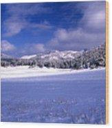 Custer State Park Wood Print
