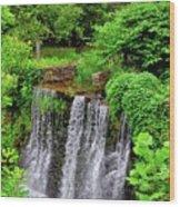 Cuttalossa Falls New Hope Pa Wood Print