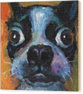 Cute Boston Terrier Puppy Art Wood Print by Svetlana Novikova