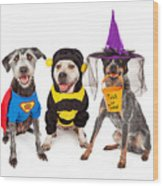Cute Dogs Wearing Halloween Costumes Wood Print