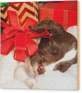 Cute Puppy With Red Bow Sleeping By Gifts Wood Print
