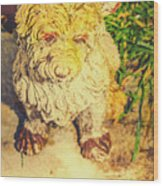 Cute Weathered White Garden Ornament Of A Dog Wood Print