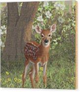 Cute Whitetail Fawn Wood Print