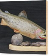 Cutthroat Trout On The Rocks Wood Print