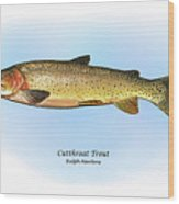 Cutthroat Trout Wood Print by Ralph Martens