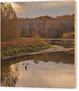 Cuyahoga Valley Autumn Sunset Wood Print