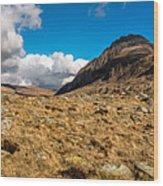Cwm Idwal Panorama Wood Print