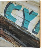 Cya Brookingss Harbor 0121 Wood Print