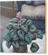 Cyclamen And Wicker Wood Print