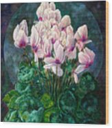 Cyclamen In Orbit Wood Print