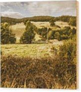 Cygnet Rustic Farming Fields Wood Print