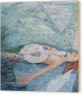 Cygnets Penn And Mermaid Wood Print