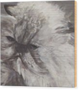 Cynthia Wood Print