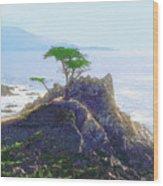 Cypress At Carmel Wood Print