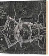 Cypress Design Wood Print