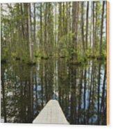 Cypress Garden Swamp Wood Print