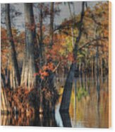 Cypress Group  Wood Print