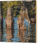 Cypress Grove One Wood Print