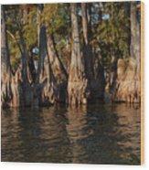 Cypress Grove Two Wood Print