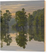 Cypress In Lake Reflection Wood Print
