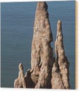 Cypress Knees Wood Print