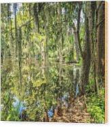 Cypress Pond Delight Wood Print