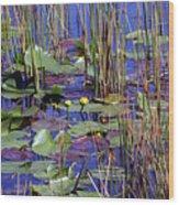 Cypress Pond Tranquility Wood Print